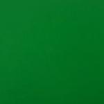 Лиственно-зеленый RAL 6002